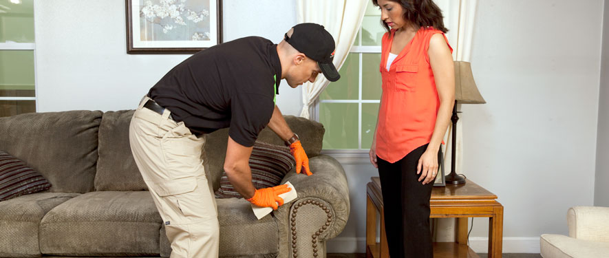 Centreville, MD carpet upholstery cleaning