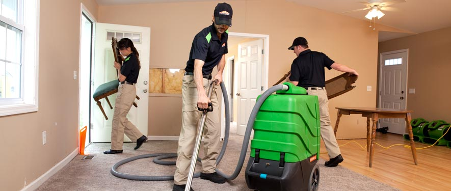 Centreville, MD cleaning services
